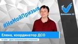 #НеМойПризыв Елена Попова, координатор Движения СО