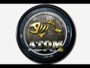 Atom fishing 2 Что это такое?