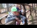 На день рождения внука пошли в зоопарк Зверушки на Лампушках
