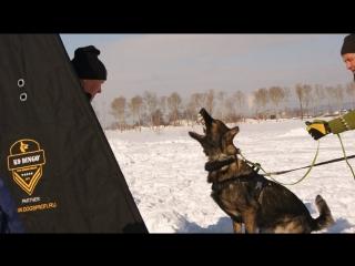 Южный- Сахалин. Тренинг по защите и послушанию с Алексеем Соколовым и Наталией Волкомуровой
