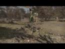 Трейлер персонажа Guan Ping из игры Dynasty Warriors 9!