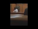 Видео суда над XXXTentacion