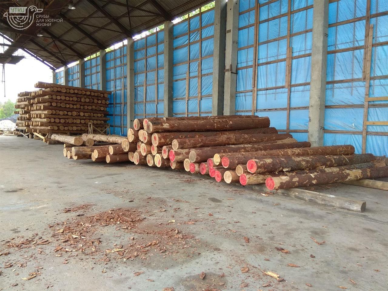 Бревно сосны для строительства бани и беседки - запасы компании УтКи