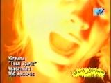 Beavis and Butt-head - Nirvana_Smells Like Teen Spirit [MTV]