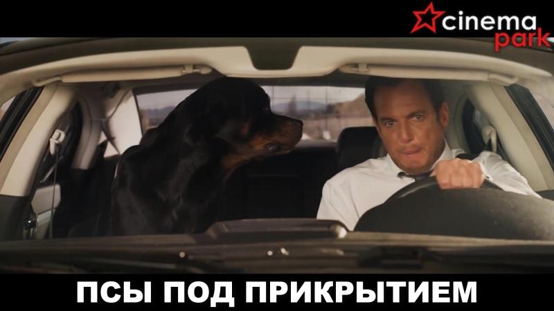 🎬«Псы под прикрытием» (комедия, приключения, семейный, 6)