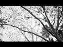 $Ha Hef - No Choice Official Video 1