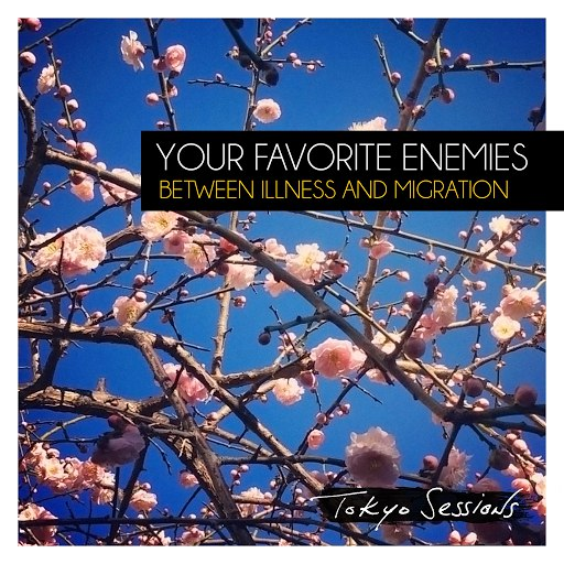 Your Favorite Enemies альбом Between Illness and Migration (Deluxe: Tokyo Sessions)