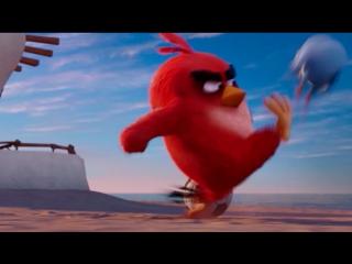 «angry birds в кино» и на стс!