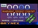 Brynex Бонус 200 GH/s - Проект платит Вывод 2800 DOGE