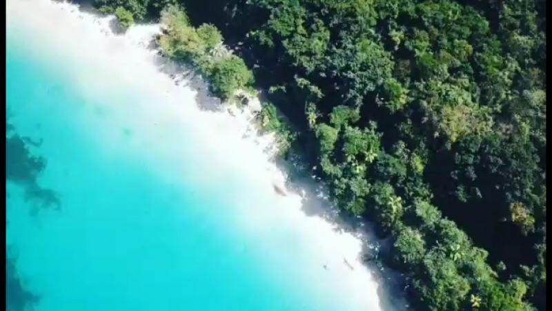 Карибское выживание с ТК Волчица