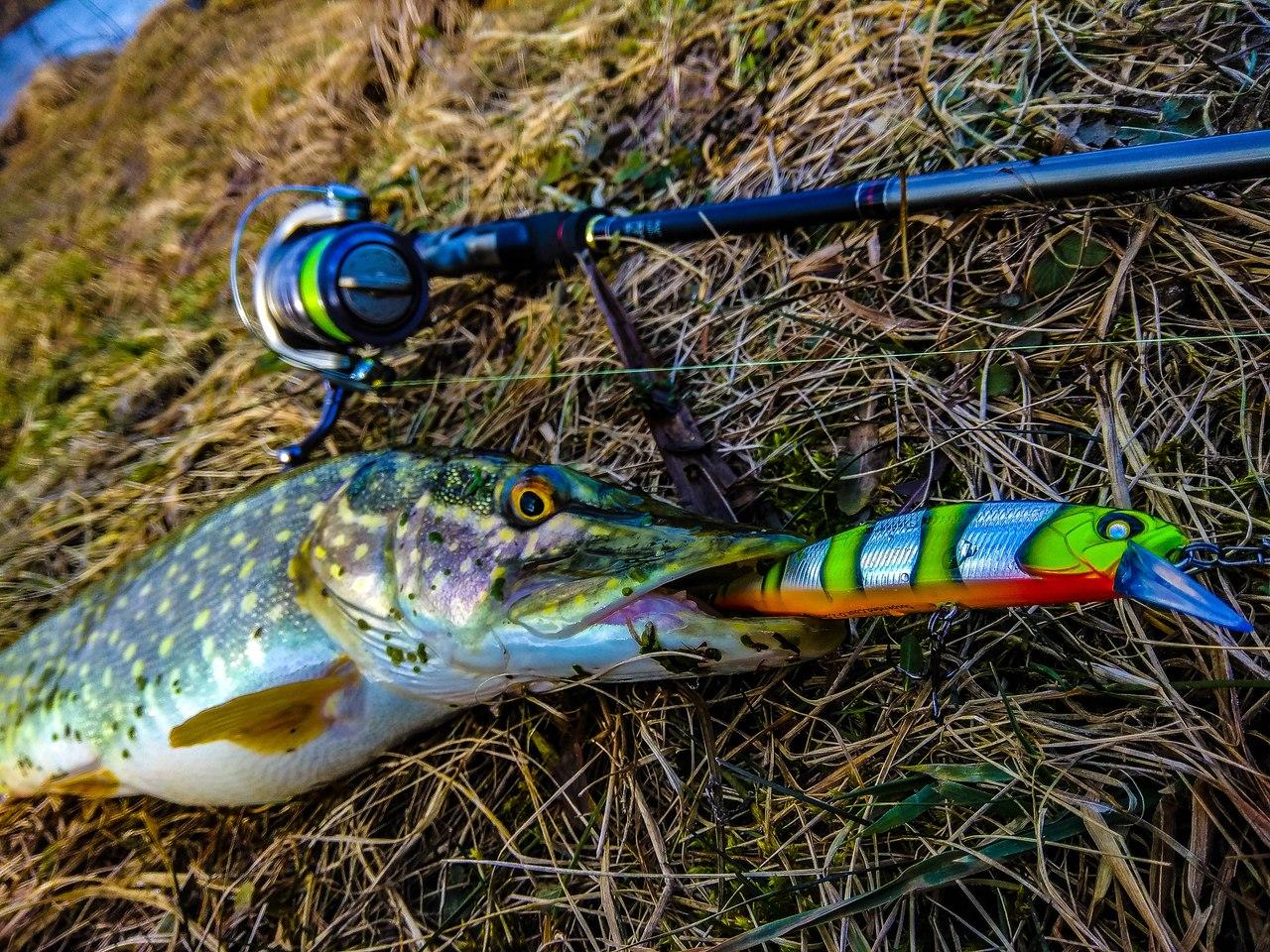 Рыбалка в гродненской область