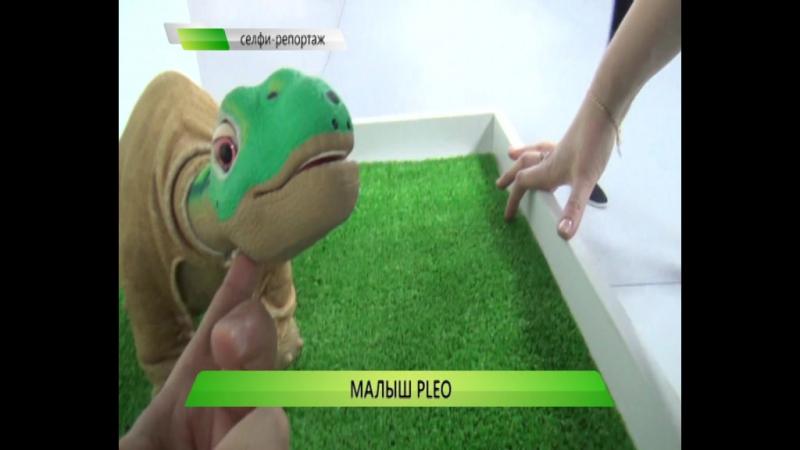 Малыш Pleo