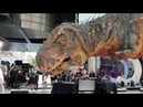 This is too realistic Huge T Rex movable model arrive at London