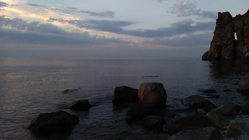 Дельфины на восходе солнца у подножья Аю-Даг
