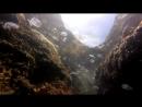 Симеиз. пляж Коралл