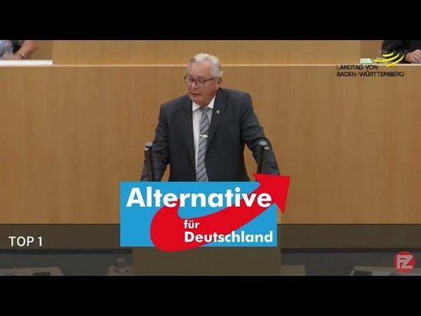 Hammer-Rede von Bernd Gögel (AfD): Nimmt die Grünen Spinnereien so richtig auseinander