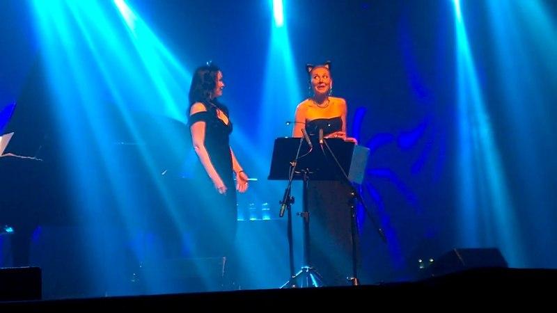 Duelo de Gatas - Noche Escandinava III - SANTIAGO CHILE 22-05-18