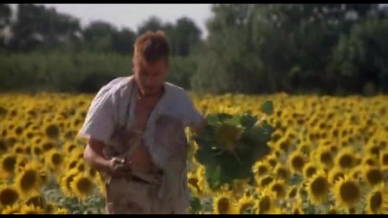 3 Винсент и Тео.(Тим Рот)1990.драма, биография