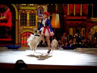 Собачки Мон и Джон делают все, что говорит юная дрессировщица! / Александра Богданчикова. Синяя птица