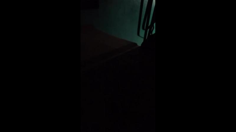 Екатерина Кузина - Live