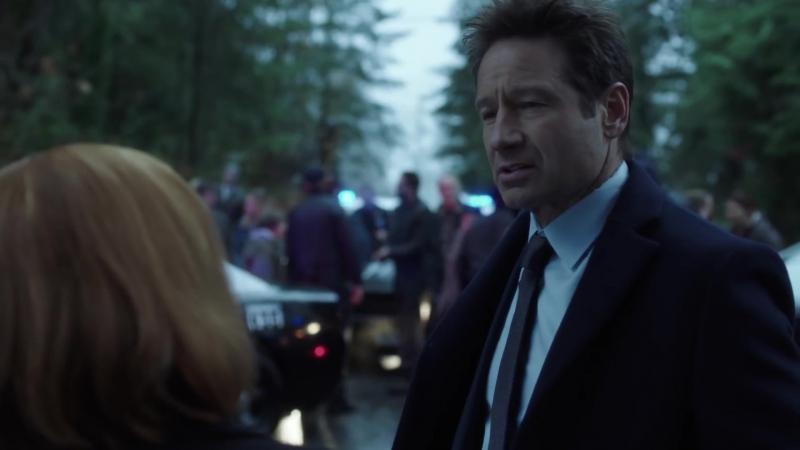 Отрывок 8-го эпизода 11-го сезона: Малдер и Скалли обыскивают дом Фелонов