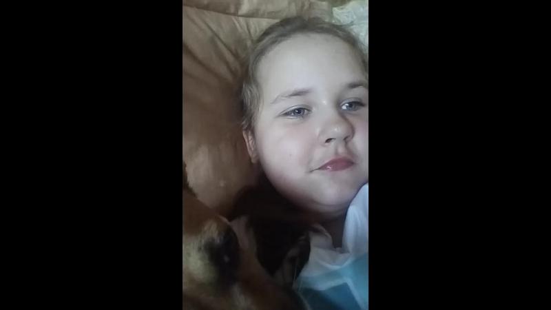 отвечаем с собакой на вопросы
