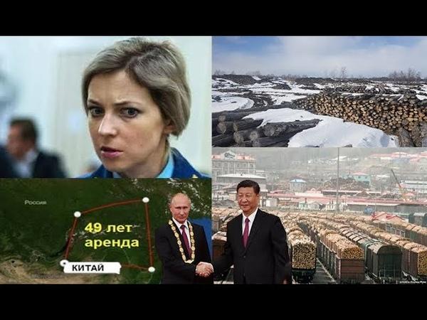 Путин продал китайцам весь сибирский лес.