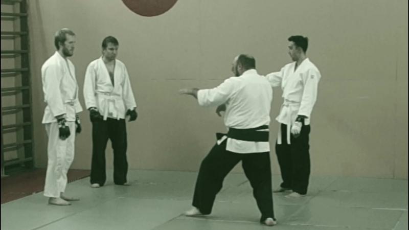 Sinten Ryu Aikijujutsu. Нарезка одной тренировки (не постановка) 13.08aikisinten.spb.ru