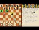 Урок 2. Дебют Испанская партия Открытый вариант шахматы для 2 разряда.
