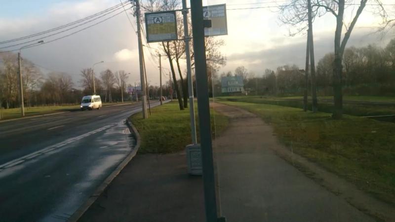 Макаровка в Стрельне ноябрь 2017