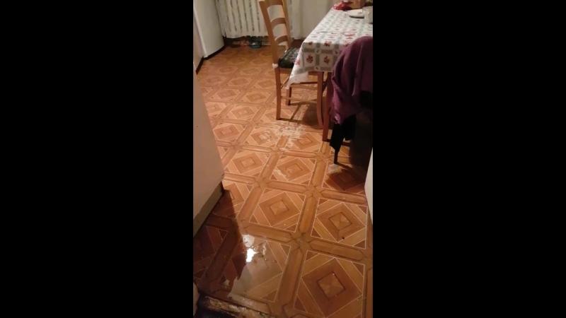 Сосед с 11 этажа превратил нашу квартиру в аварийную с потолка льет вода Малахов Пригласите Нас На Программу Прямой эфир С Потол