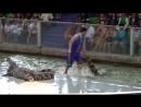 Шоу крокодилов Таиланд г Сирача тигриный зоопарк 2018г