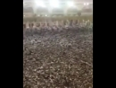 10000000000000 Haji Hajj or Tawaf e Kaba Kerte Hoe