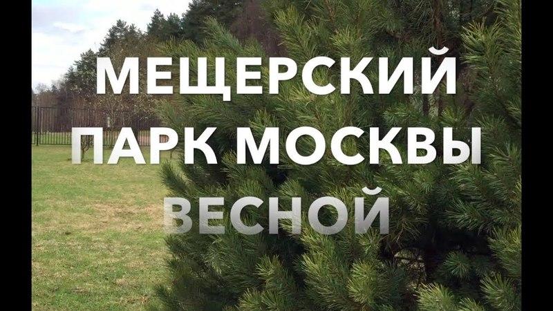 🌍 МЕЩЕРСКИЙ ПАРК МОСКВЫ ВЕСНОЙ. РЕЛАКС MESHCHERSKY PARK IN MOSCOW IN THE SPRING.RELAX