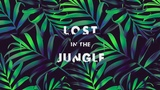 LOST IN THE JUNGLE - Compilation (Downtempo, Electro Tribal &amp Ethnic)