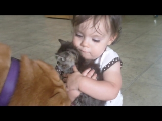 Is that your baby (Little Girl Loves Her Kitten) (Original)