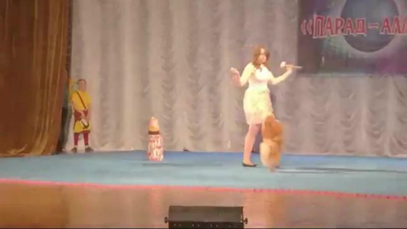 Цирковой конкурс Парад-Алле. Номер С Днём Рождения