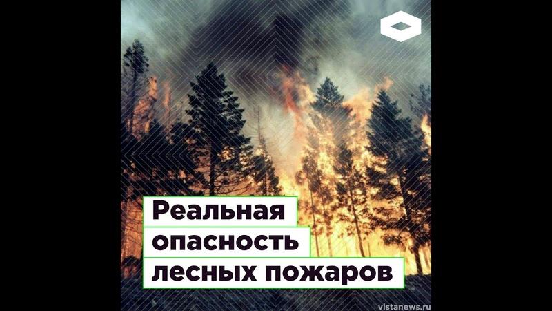 Почему не тушат лесные пожары | ROMB