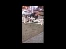 Поп избивает бизнесмена в Новосибирске