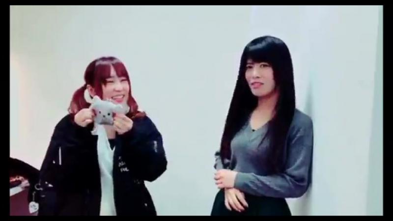 Roselia ~Nya~ ♦seiyuu (Sakuragawa Megu and Aiba Aina)