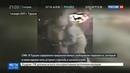 Новости на Россия 24 • Новогодний расстрел в стамбульском клубе террорист сбежал, подельников поймали