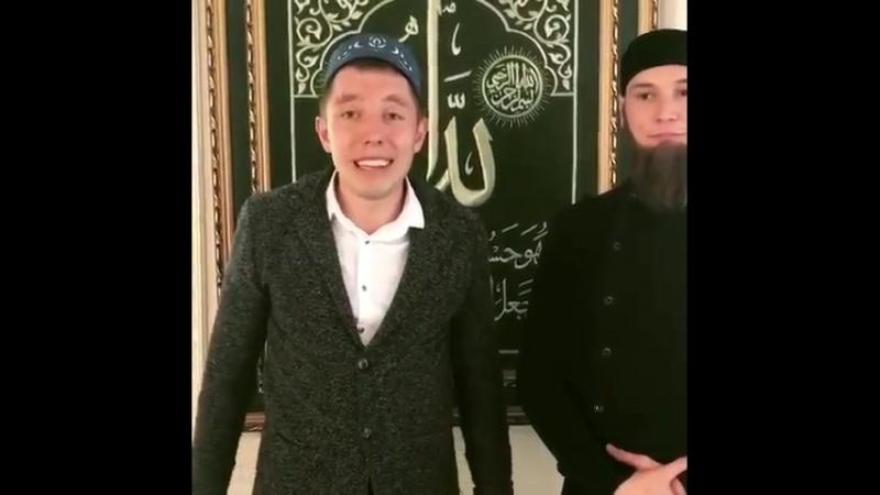 Минниханов и Кадыров пародия