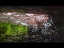 AMV Клипы - Give us a little love [муз. Fallulah - видео: Kotonoha no Niwa, 5 Centimeters Per Second]