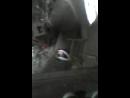 побег от охраны на водонапорной башни часть-2 спалила охрана и вызывает ментов