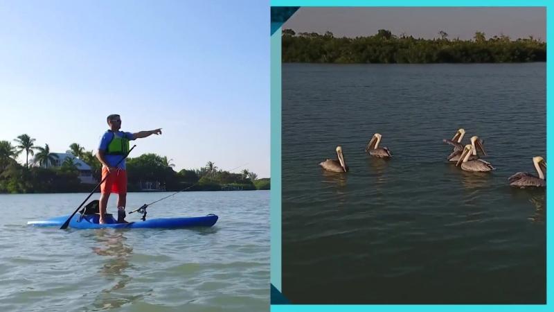 Perception Kayaks - Back in the Hi Life