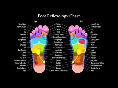 Foot Healing - 7.83HZ, 33HZ, 108HZ, 194.18HZ, 256HZ, 264HZ, - White, Pink, Brownian Noise
