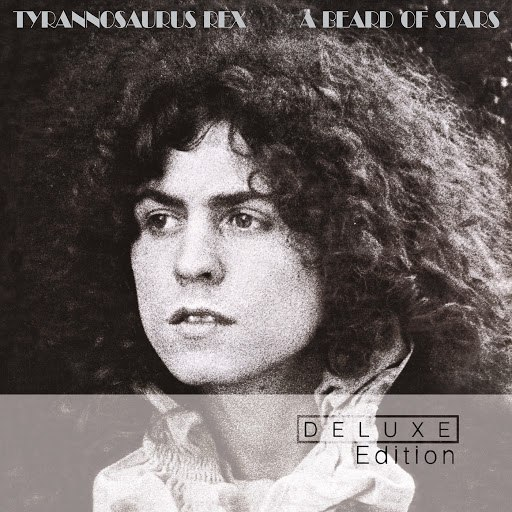 T. Rex альбом A Beard Of Stars (Deluxe Edition) (Deluxe Edition)