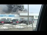 Пожар в автосалоне на Савушкина