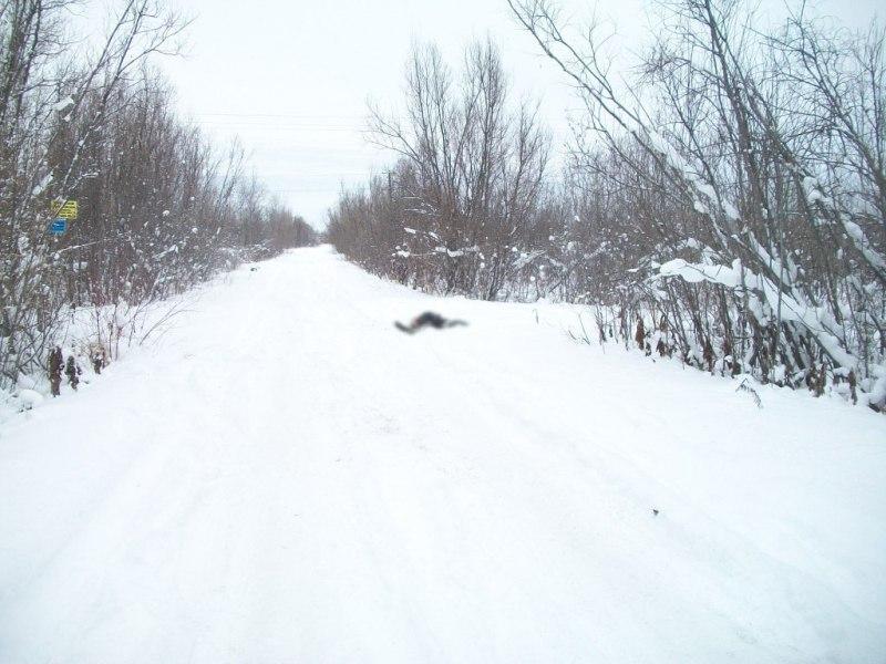 В Томской области сотрудники полиции по «горячим следам» задержали подозреваемого в убийстве