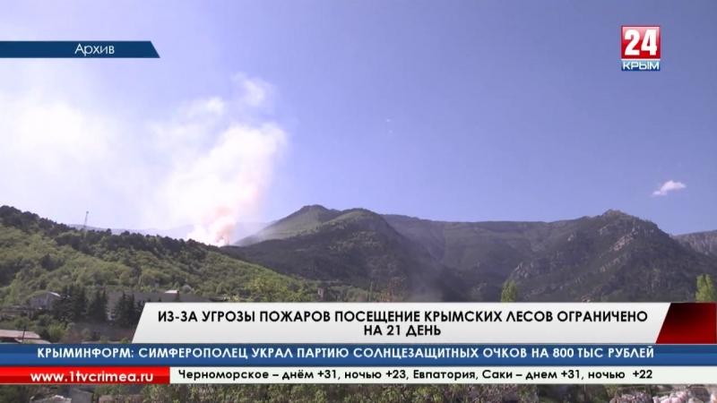Посещение крымских лесов ограничено из за угрозы пожаров на 21 день